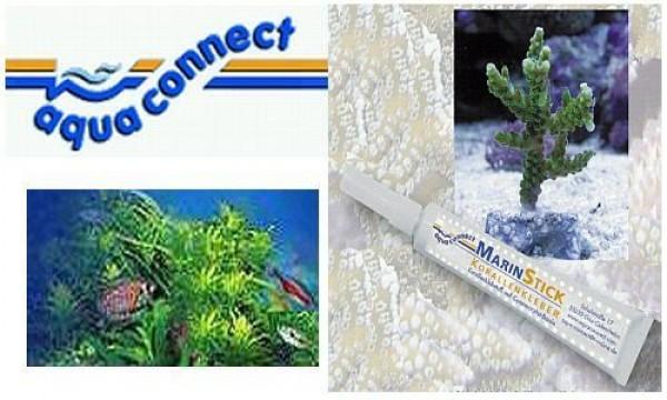 MarinStick Korallenkleber 20 gr.