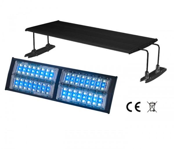 LED IPX weiß/blau spritzwassergeschützt